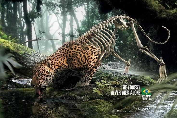 Advertisement by DPZ&T, Brazil