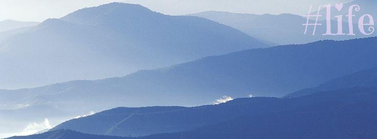 #life blue mountains