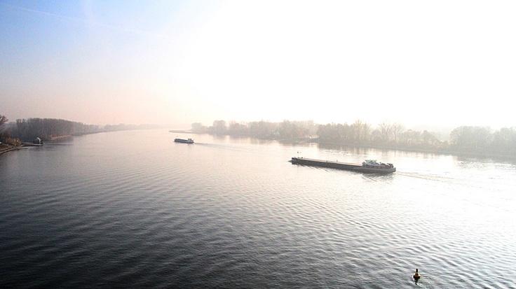 Der Rhein bei Weisenau