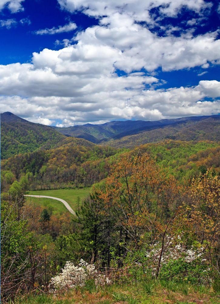 1568 Best Tennessee And Blue Ridge Parkway Images On