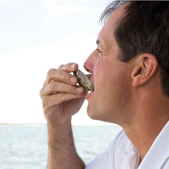 How to Shuck Oysters | Food & Wine