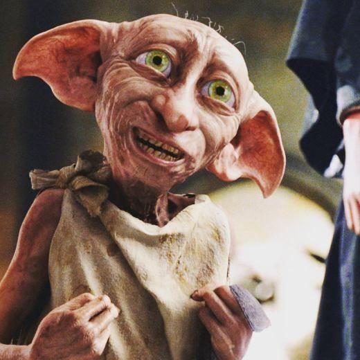 """Il padrone ha dato a Dobby un calzino. Il padrone ha regalato a Dobby un indumento. Dobby è un elfo libero.""  #dobby #harrypotter #harrypotteritalia #dobbyèunelfolibero"