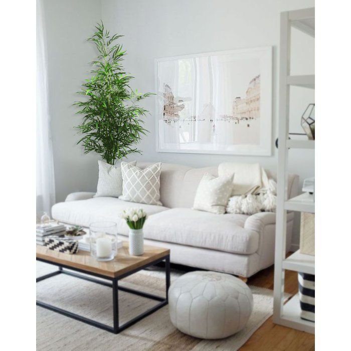 Floor Bamboo Plant Small Living Room Decor Living Room Scandinavian Small Apartment Living Room #small #living #room #interiors