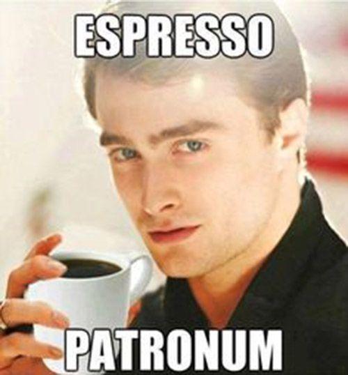 Es hora del Café y Harry, lo sabe.