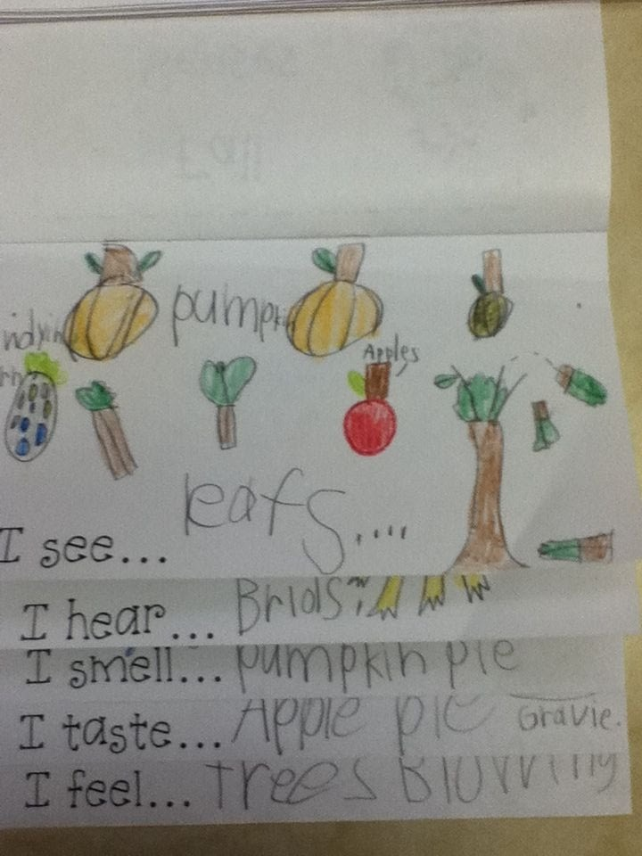 Fall five senses flip book - adapt for spring or other topics