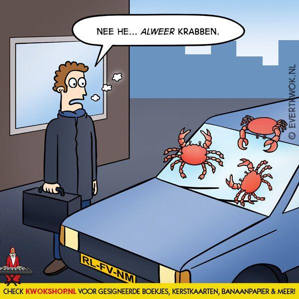 Hans! Snel! -Evert Kwok