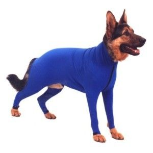 Wow I need this for car rides (maybe even the house) to control shedding!!! Lightweight, breathable suit for snow protection, controlling shedding, dander, dirt, stickers/burs .... This highly versatile suit also helps protect injuries, rashes, and surgical sites, as well as stop dogs from scratching that suffering from skin related allergies. Its high quality stretch material moves with your dog and is easy to put on and take off. The unique design stays in place even on very active dogs.