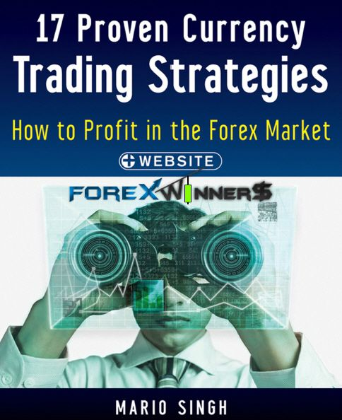 17 proven currency trading strategies how to profit in the forex market mario singh