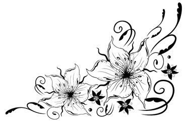 Lilien Blumen Ranke  banner  Lily flower tattoos Flower tattoos Tattoos