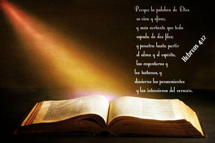 La Biblia completa es inspirada por Dios. Cada palabra es palabra de la boca de Dios, así que cada palabra en la Biblia lleva en sí el potencial de vida que Dios tiene para mí. Lo ves a Él, y ves Su naturaleza. Ves Sus caminos, Sus propósitos para que ajustes tu vida sin demora.