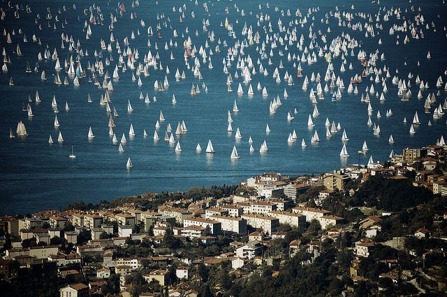 #Barcolana di #Trieste © Matteo Lavazza Seranto