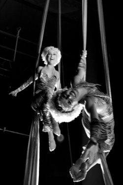 aerial and trapeze performers