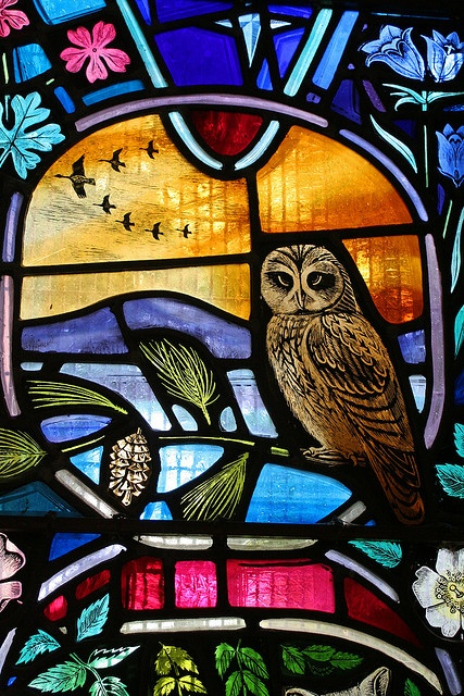 Don't you just love an owl? Especially a Stained Glass one, get a better chance to look! Dornoch Cathedral