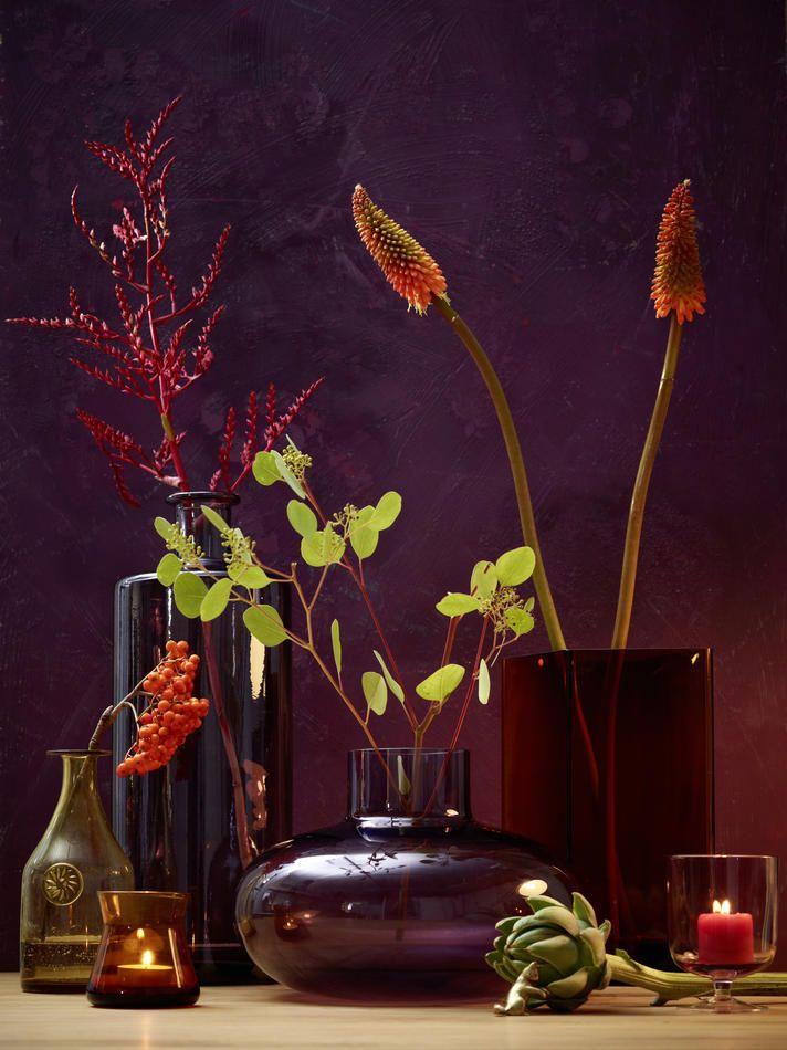 Poesie des Herbstes , Fall Poetry, Fackellilie, Eucalyptus