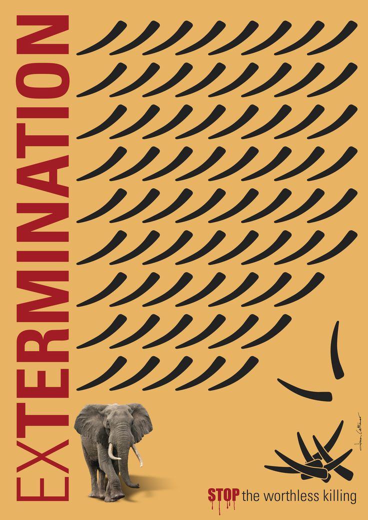 #ExTermination #STOP the worthless killing #Elephant