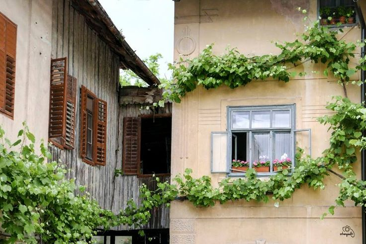 travel photography bled slovenia slovenje window plant house town city