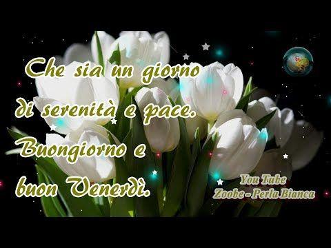 Buongiorno e Felice Venerdi'  - YouTube