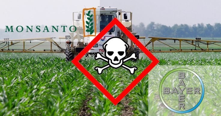 Stop monster-merger BaySanto! A Bayer-Monsanto merger would be a disaster for our farmers. It will be a catastrophe for our bugs, bees and birds. We urge you to reject the merger and prevent the damage caused by these corporations. We also demand full openness about your decision making processes.