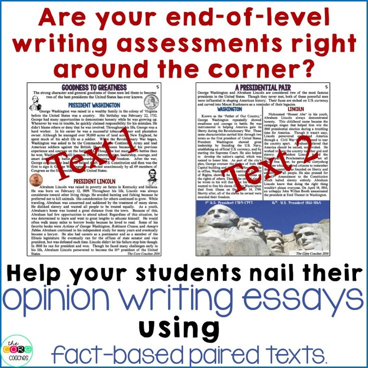 Text based opinion essay