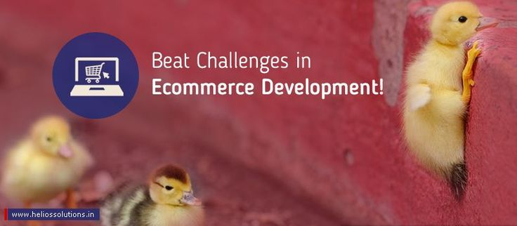 Ecommerce development specialists have to address certain challenges while building your site to make your e-store succeed. Read the article know in detail.