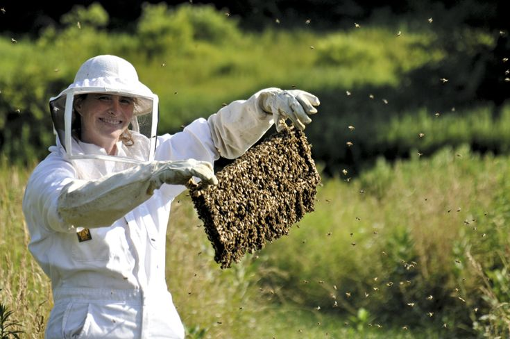 Keep bees...they're good for the environment....and the honey is sooo sweet.  Can't get a more natural sweetener and good for the body too!