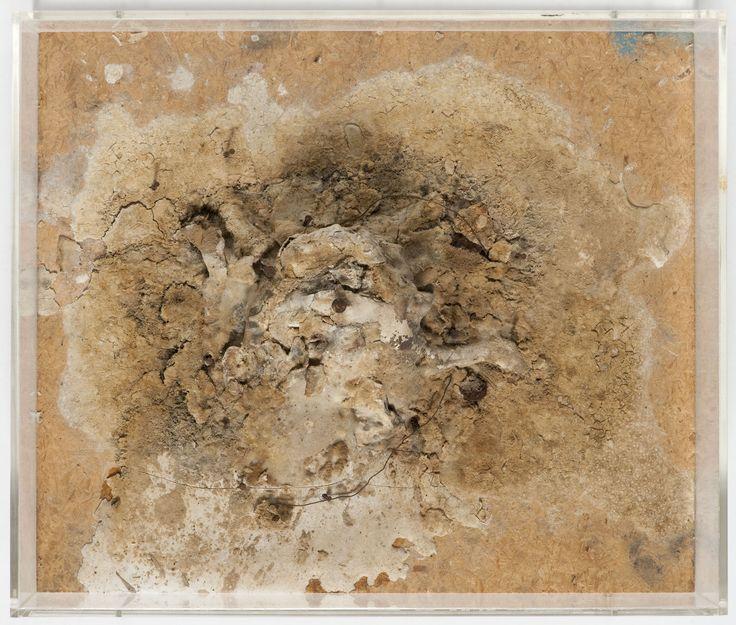 Dieter Roth, Island, 1968-1974 yogurt mould, nails, wire on chip board, plexiglass cover