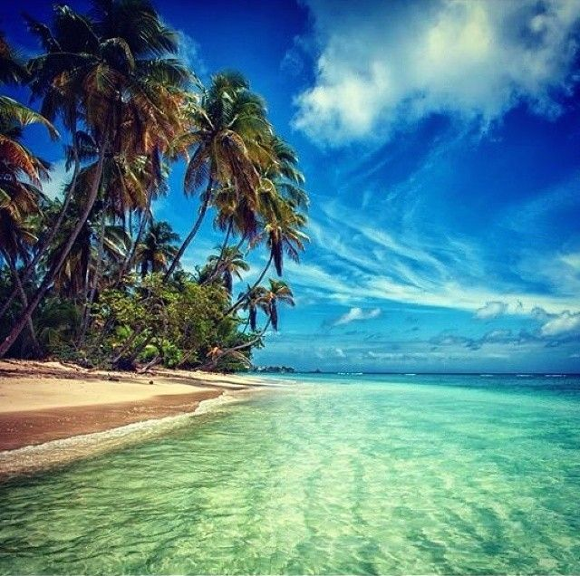 76 Best Beaches Of Trinidad And Tobago Images On Pinterest