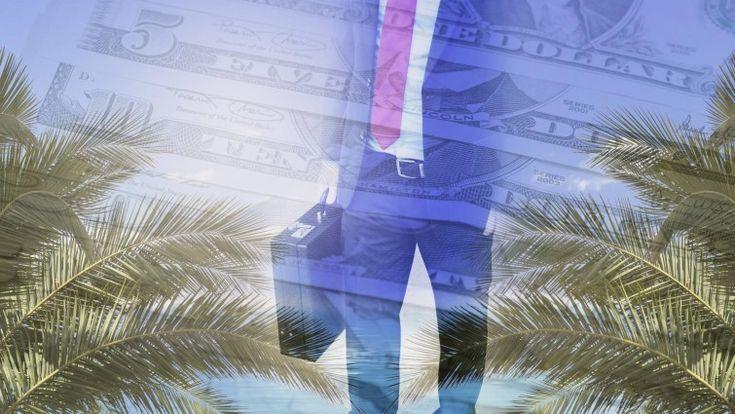 """Stilllegung von Steueroasen""""Es fehlt bisher der politische Wille"""""""