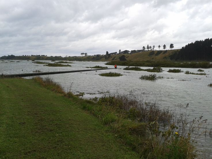 King Tide At Waikopua Creek   Getting Ready To Go Out And Do Some Biscuiting