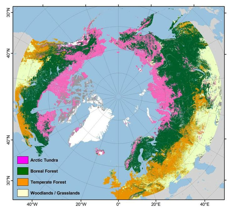 Arctic Tundra, Boreal Forests