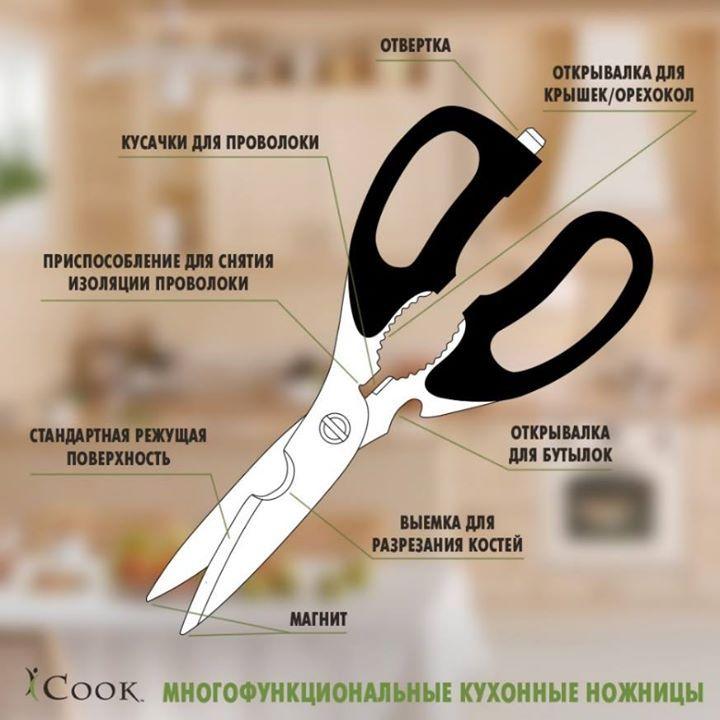 Для чего нужны кухонные ножницы, если есть ножи?  Как покупать продукцию Amway дешевле. Посмотреть: http://elenafedulina.com/landing75222  Да, нож — это один из основных помощников на кухне, но есть такие виды работ, с которыми он либо не справится, либо выполнять их с помощью ножа будет неудобно. И тогда на помощь приходят кухонные ножницы.  Особенно если это не простые ножницы, а iCook™ Многофункциональные кухонные ножницы  - это универсальный инструмент, который сможет помочь не только на…