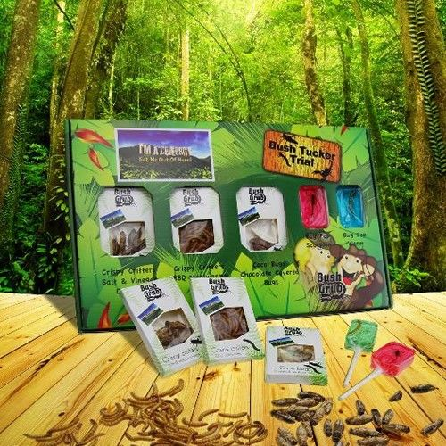 I'm a Celebrity Get Me Out of Here! Bush Tucker Trial from Personalised Gifts Shop - ONLY £19.99