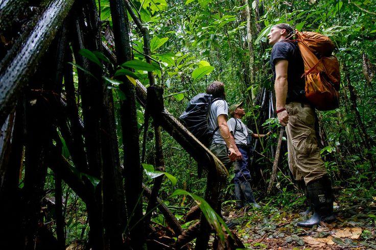 Darien National Park Panama