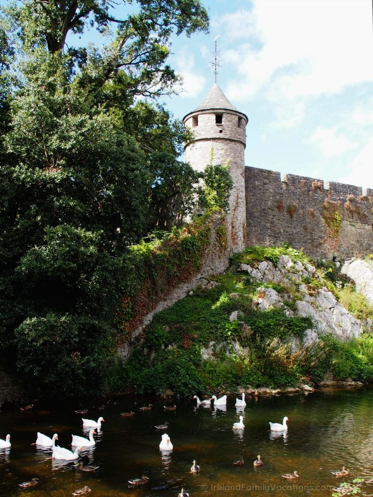 Ducks swim beneath a corner tower of Cahir Castle, County Tipperary. Ireland vacations | IrelandFamilyvacations.com. Ireland vacation photo