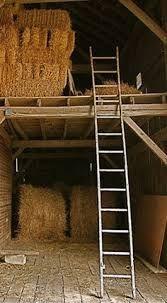 Billedresultat for old horse stable and hay
