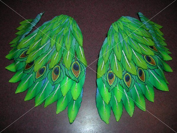 peacock wings - Google Search