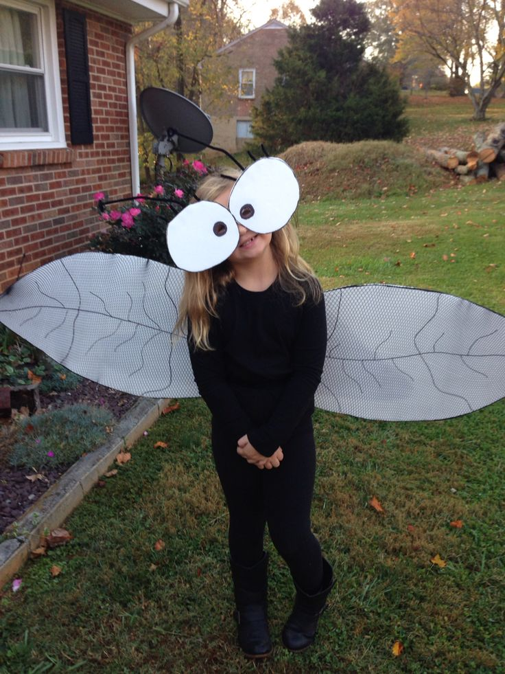 Fly Guy costume!!! Cut out foam made wings and eyes! Fishnet stockings over wings!