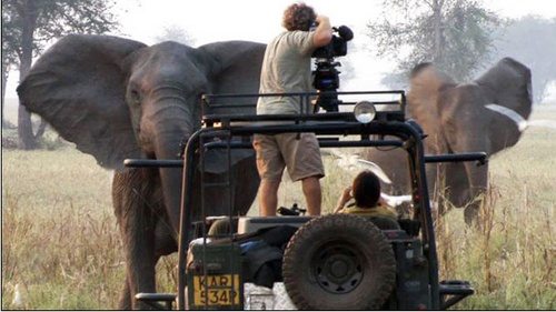 National Geographic filming at Gorongosa National Park (Mozambique)