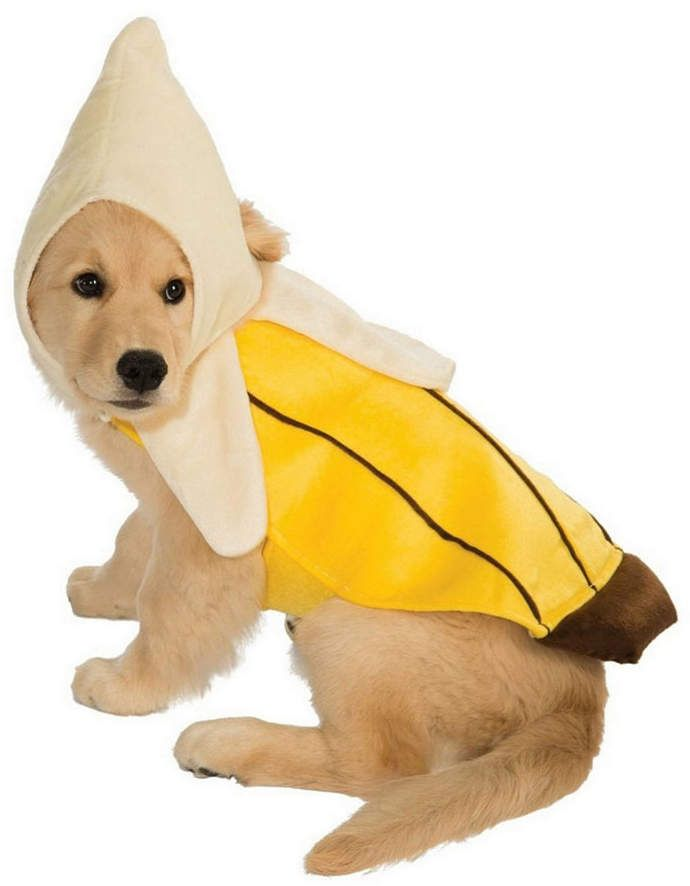 Buyseasons Banana Pet Costume Pet Costumes Dog Halloween