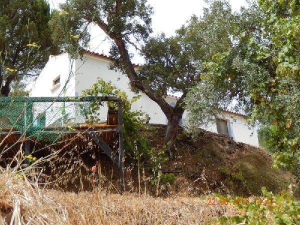 Vakantiehuis Aljezur/Algarve Faro Odeceixe   Natuurliefhebbers gezocht ! huren