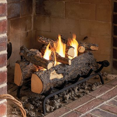 Fireplace filler and Logs in fireplace