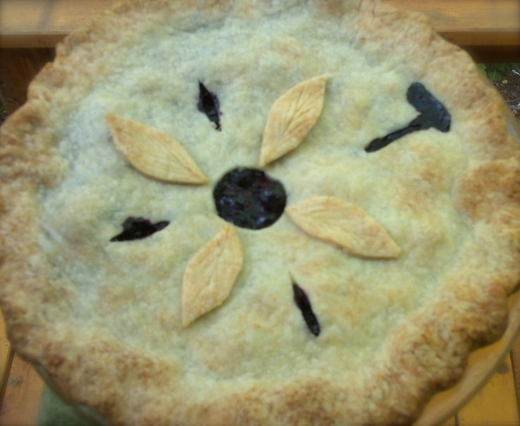 V e g a n D a d: Lemony Blueberry Pie (and how to bake a frozen pie)...i have a g/f pie crust recipe that i am going to use...but, i really like vegan dad!!  if you haven't already, you should totally check out his blog and cookbook....both are very good stuff!!