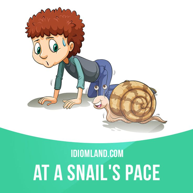 """At a snail's pace"" means ""very slowly"". Example: The ​roads were ​full of ​traffic and we were ​travelling at a snail's ​pace for two ​hours."