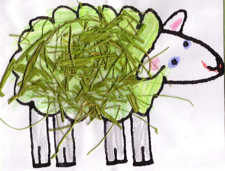 Colour and add green straw the create a gorgeous green sheep.
