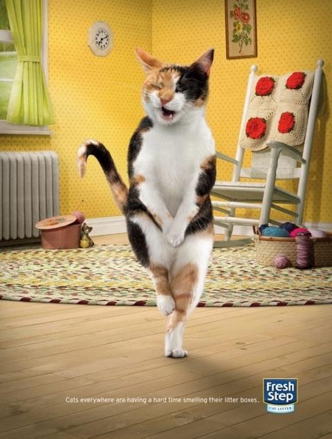 Agency: DDB LA  Brand: Fresh Step  Cross-legged cats (III)