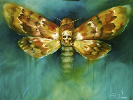 Death of a moth thoughts