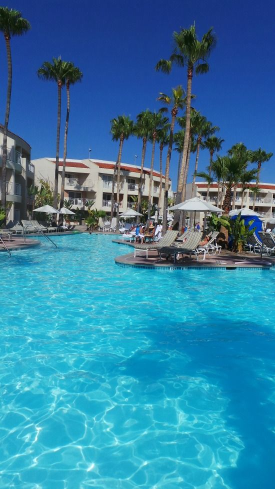 Pool and Palm Trees at the Loews Coronado Bay Resort #sandiego