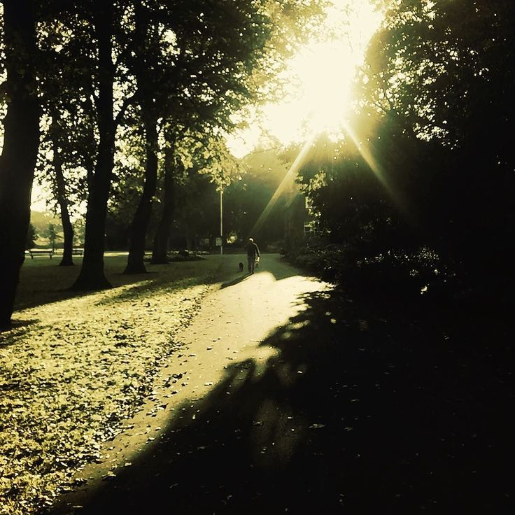Early morning park witnessing with the dog walkers #jw #jwministry #jwpioneer #park #stocktonontees #ropnerpark