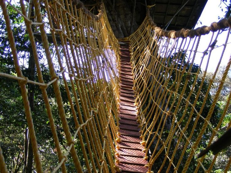 11 Hard-to-Get-to Hotels That Are Worth the Climb, Dive, Plane Ride, or Boat Trip:  Spiders Web, 11 Hard To Get To, Boats Trips, Planes Riding, Magic Resorts, Vacations Ideas, Trees House, Green Magic, Hard To Get To Hotels