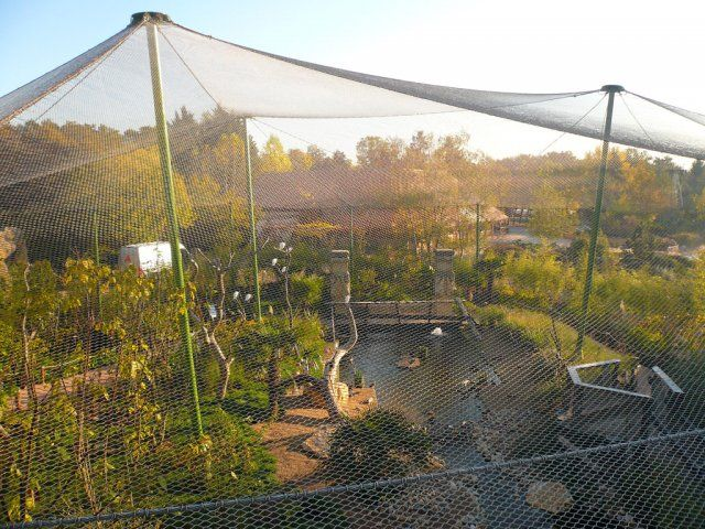 Large Aviary Aviaries Amp Exhibits Chicken Cages Bird